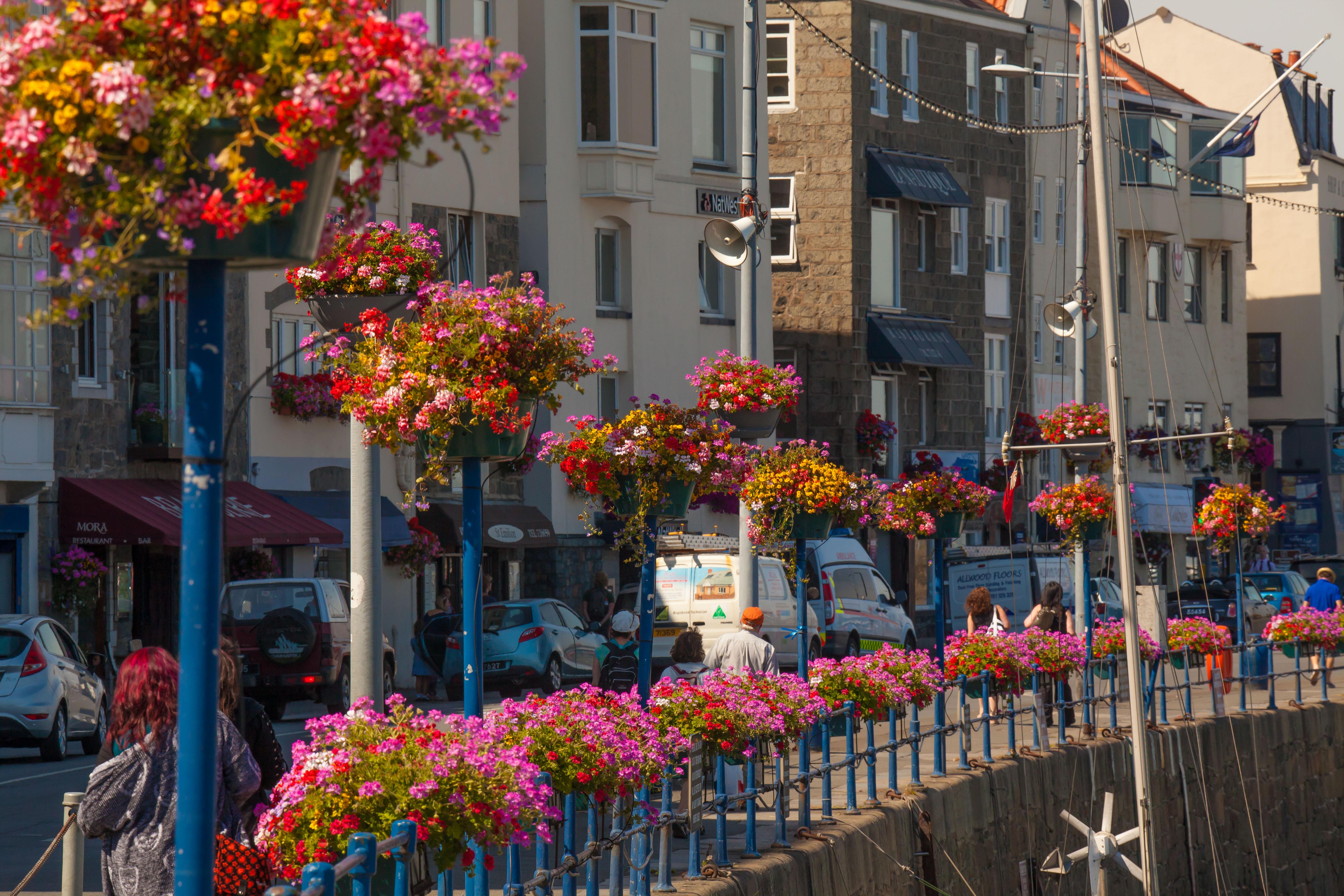Visit Guernsey - Floral St Peter Port