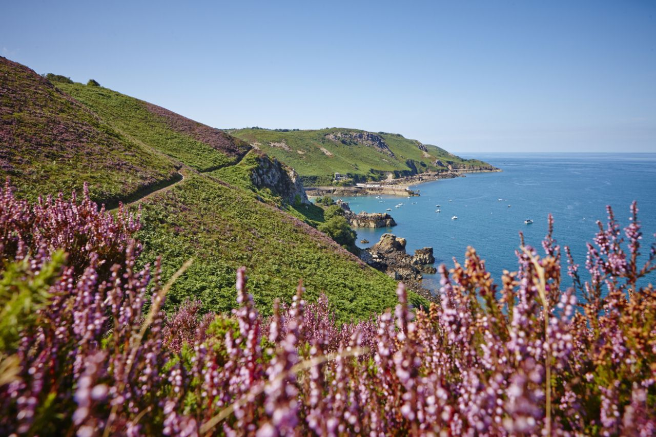 Jersey - North coast walking path, west of Bouley Bay, Trinity