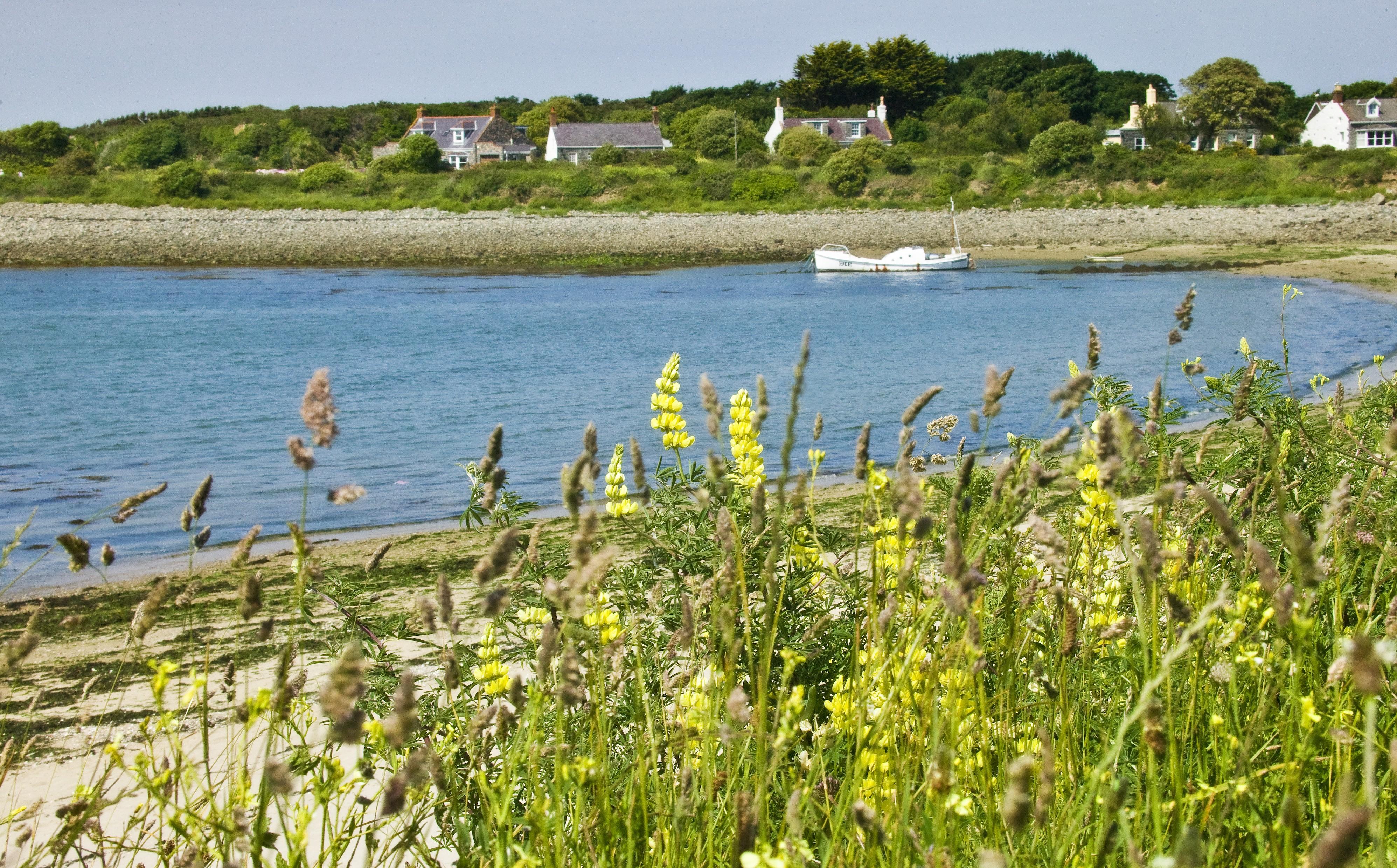 Guernsey - bay